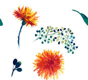 Watercolor seamless pattern with dandelion. Floral background. Stock Photography