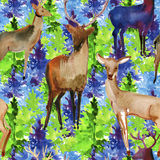 Watercolor seamless pattern with deer and tree. Stock Images