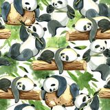 Watercolor seamless pattern of different panda and leaves Stock Image