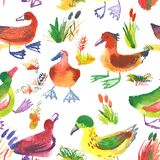 Watercolor seamless pattern with ducks. Floral background with c. Ute farm birds and cane on white backdrop. Hand drawn illustration for fabric, surface Vector Illustration