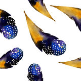 Watercolor seamless pattern with feathers. Vector Royalty Free Stock Images