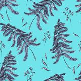 Watercolor seamless pattern with ferns. Leaves. Vintage floral texture on blue background. Botanical illustration Stock Photo