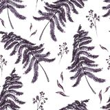 Watercolor seamless pattern with ferns. Leaves. Vintage floral texture on white background. Botanical illustration Stock Photography