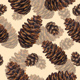 Watercolor seamless pattern fir cones. Watercolor fir cone pattern. Watercolor pine cone background. Seamless pattern cone. Hand drawn illustration. Design for Stock Images