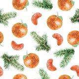 Watercolor seamless pattern with fir tree branches and tangerine. Watercolor illustration on white background. Seamless pattern can be used for wallpapers, web Royalty Free Stock Images
