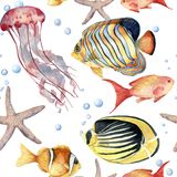 Watercolor seamless pattern with fish. Hand painted tropical fish, starfish, jellyfish, and air bubbles. Nautical. Illustration for design, print or background Royalty Free Stock Photography