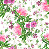 Watercolor seamless pattern. Watercolor floral seamless pattern with peony Stock Photo