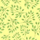 Watercolor seamless pattern with floral twigs stock illustration