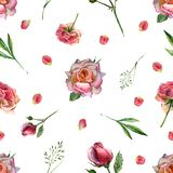 Watercolor seamless pattern with flowers and pink petals stock illustration