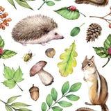 Watercolor seamless pattern Forest life Illustration on white background with hedgehogs, ladybug, hazelnut,chipmunk, mushroom. royalty free illustration