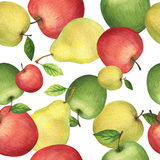 Watercolor seamless pattern with fresh apples and pears. Hand drawn food texture with fruits on white background Royalty Free Stock Photo