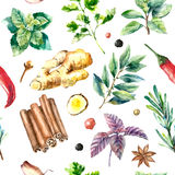 Watercolor seamless pattern of fresh herbs and spices . Watercolor herbs and spices pattern. Seamless texture with hand drawn elements Royalty Free Stock Photography