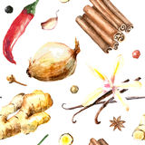 Watercolor seamless pattern of fresh spices . Stock Image