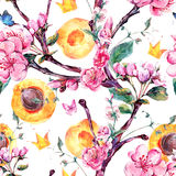 Watercolor seamless pattern with fruits and flowers apricot tree Royalty Free Stock Images