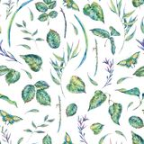 Watercolor seamless pattern with green leaves Stock Images