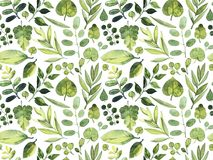Watercolor seamless pattern. Green leaves of different plants on a white background. Watercolor seamless pattern. Green leaves of different plants on a white Royalty Free Stock Image