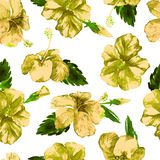 Watercolor Seamless Pattern. Hand Painted Illustration of Tropical Leaves and Flowers. Tropic Summer Motif with Hibiscus Pattern. Stock Images