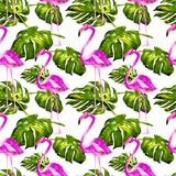 Watercolor Seamless Pattern. Hand Painted Illustration of Tropical Leaves and Flowers. Tropic Summer Motif with Tropical Pattern. Tropical Pattern. Watercolor Royalty Free Stock Images