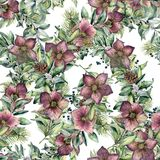 Watercolor seamless pattern with hellebore flowers. Hand painted snowberry, fir branch and leaves, berry isolated on. White background. Winter floral ornament Royalty Free Stock Photography