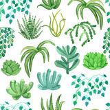 Watercolor seamless pattern house plants in pots Stock Images