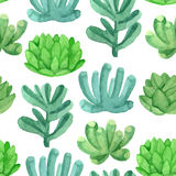 Watercolor seamless pattern house plants in pots Royalty Free Stock Images