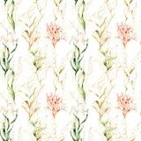 Watercolor seamless pattern with laminaria leaves and corals. Hand painted underwater floral illustration with algae and. Tropical anemone isolated on white stock photography