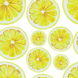 Watercolor seamless pattern of lemon fruit slices. Vector illustration of citrus fruits. Eco food illustration Royalty Free Stock Photo