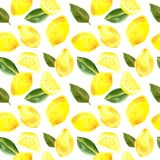 Watercolor Seamless pattern with lemon and leaves royalty free illustration