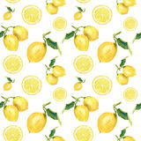 Watercolor seamless pattern with lemons. Hand painted citrus ornament on white background for design, fabric or print. stock illustration