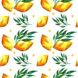 Watercolor seamless pattern with lemons and leaves. stock illustration