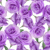 Watercolor seamless pattern with lisianthus Stock Photography