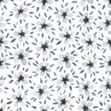 Watercolor seamless pattern. Royalty Free Stock Photo