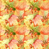 Watercolor Seamless pattern with bright colors forest leaves and branches. Beautiful autumn background in orange, green. Watercolor Seamless pattern with maple royalty free stock photo