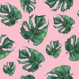 Watercolor seamless pattern with monstera leaves. vector illustration