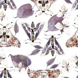 Watercolor seamless pattern with moths and flowers. Dark mystical colors. Lilac and brown royalty free illustration