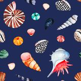 Watercolor seamless pattern with multicolored seashells.Dark background stock photos