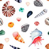 Watercolor seamless pattern with multicolored seashells stock photography