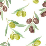 Watercolor seamless  pattern with olive branches. Royalty Free Stock Photo