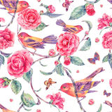 Watercolor seamless pattern with pair of birds anf camellia Stock Images