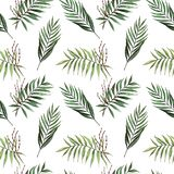 Watercolor seamless pattern with palm leaves with seeds royalty free illustration