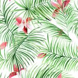 Watercolor seamless pattern with palm leaves and tropical flowers. royalty free stock image