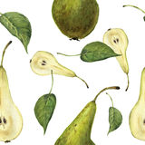 Watercolor seamless pattern with pears Conference and leaves. Botanical isolated illustration. Stock Images