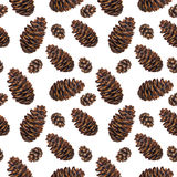 Watercolor seamless pattern pine cones Royalty Free Stock Images