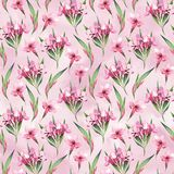 Watercolor seamless pattern of pink flowers and green leaves Stock Images