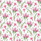 Watercolor seamless pattern of pink flowers and green leaves Royalty Free Stock Photography