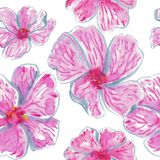 Watercolor seamless pattern of pink tropical flowers vector illustration