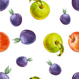 Watercolor seamless pattern with plums, red and green apples. Royalty Free Stock Images
