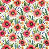Watercolor seamless pattern with poppies. Floral background. Hand drawn summer flowers. stock illustration