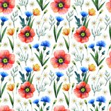 Watercolor seamless pattern with poppies. Floral background. Hand drawn summer flowers stock photos