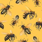Watercolor seamless pattern of realistic drawn honey bees